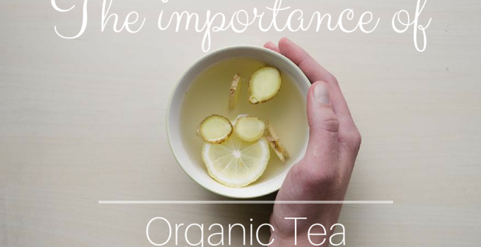 Why you should switch to organic tea