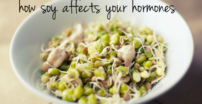 How soy affects your hormones and why you should avoid it
