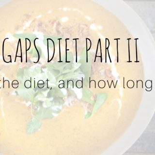 An introduction to the GAPS diet part II